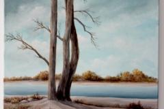 Frieda Landscape 2009